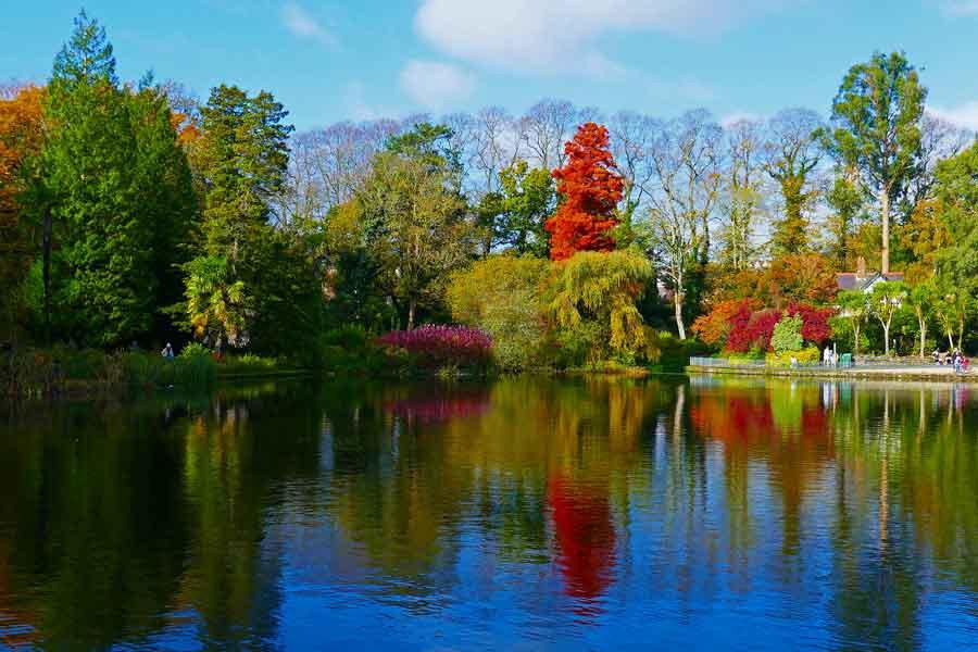 Brynmill Park in Autumn